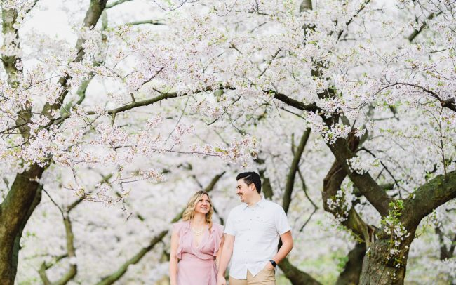 cherry blossom Toronto engagement photo at High Park