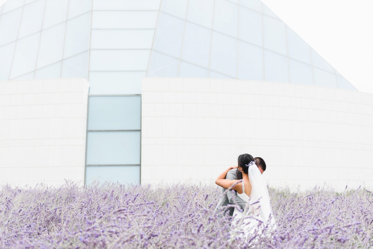 first look at Aga Khan Museum in lavender field