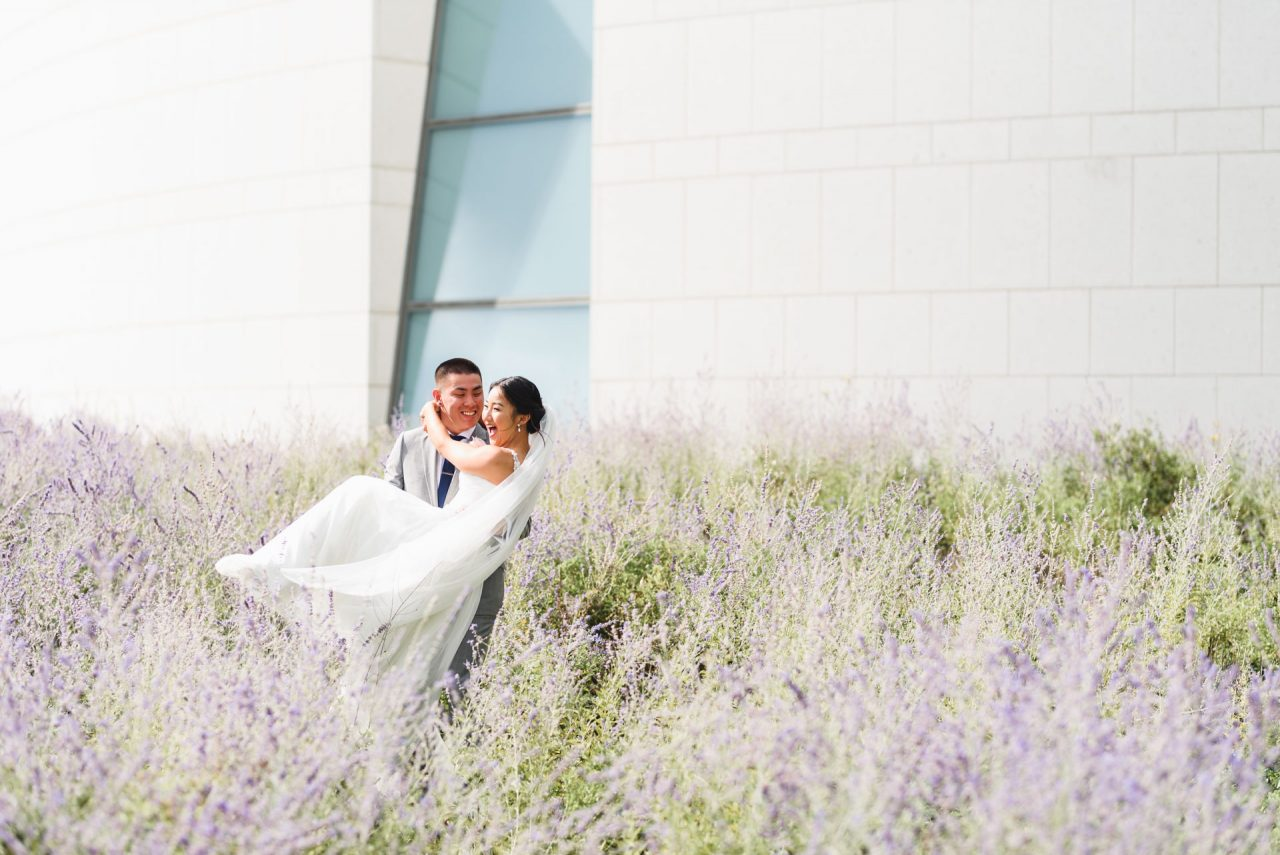 wedding pictures taken at Aga Khan Museum in a lavender field Toronto