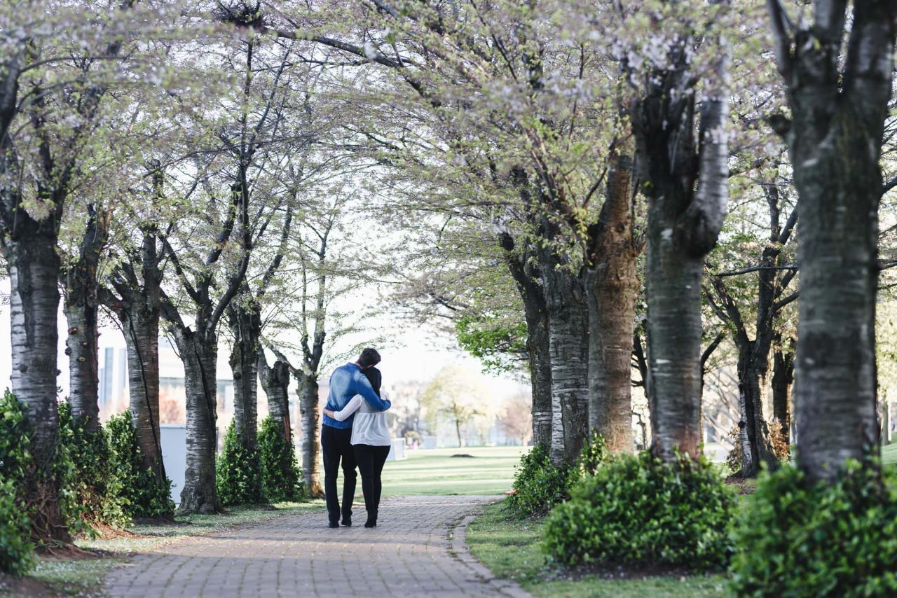 engagement photos at Spencer Smith Park during cherry blossom